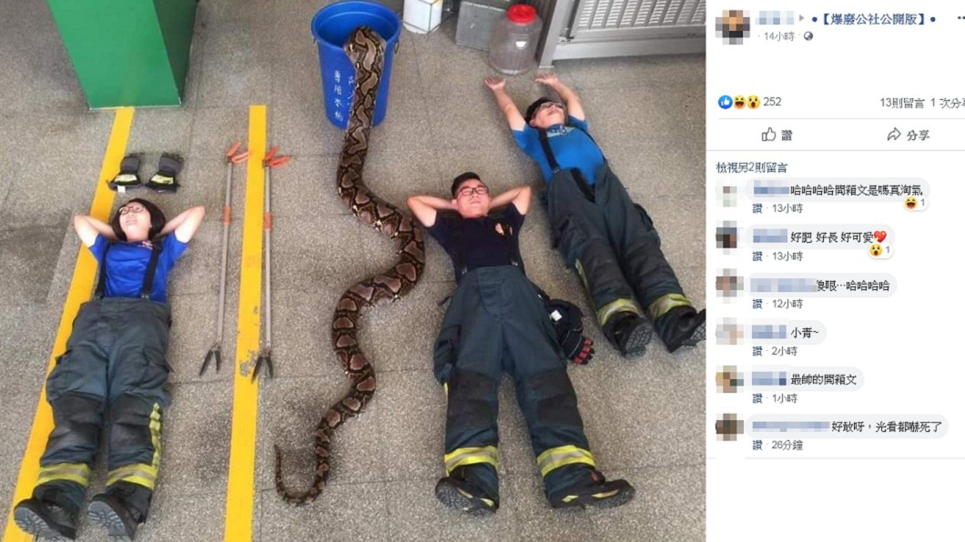 圖/翻攝自爆廢公社公開版 最狂「開箱文」在這!消防員同框6.5米巨蟒 網全看傻