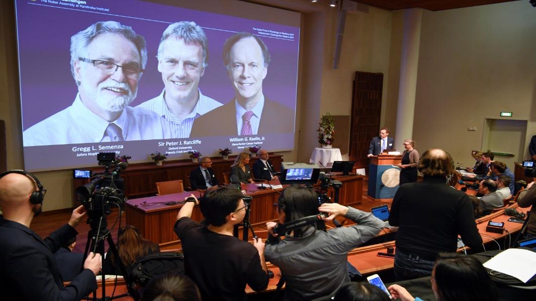圖/達志影像路透 美英3學者獲諾貝爾醫學獎 助對抗癌症