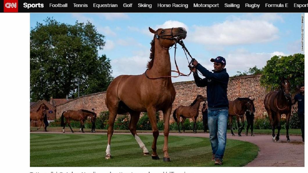 每年賽馬拍賣會都吸引許多富翁前來競標 (圖非當事一歲馬/翻攝自CNN) 有錢真好!杜拜酋長1.3億買一匹馬 專家也嚇壞