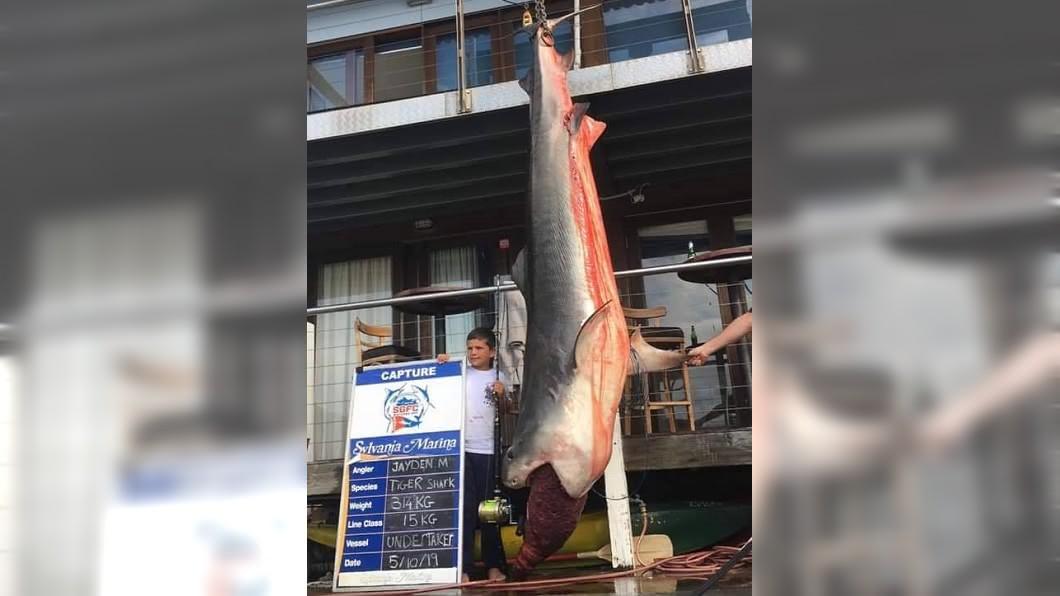傑登僅用15公斤的釣魚線就釣起314公斤重(692磅)的虎鯊。圖/CoastfishTV 8歲童釣314公斤虎鯊破世界紀錄 意外引發保育爭議
