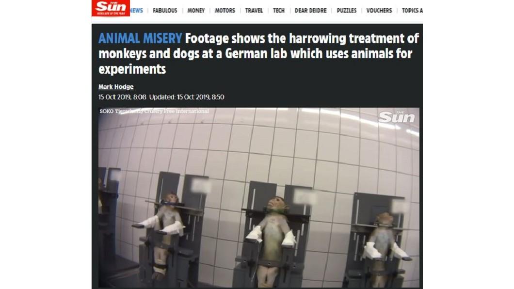 德國漢堡近郊的LPT實驗室,近日被爆出涉嫌實驗過程虐待動物。圖/翻攝自THE SUN網站 慟!猴遭鎖喉狗被灌藥物  恐怖實驗室爆虐行
