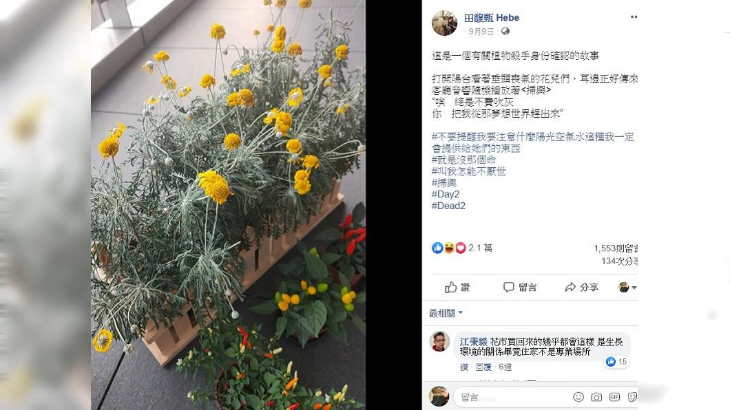 圖/翻攝田馥甄 Hebe臉書