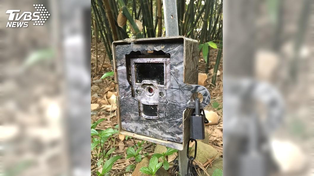 圖/苗栗縣政府提供 石虎監測相機竊案偵破 警逮2嫌救回2萬筆資料