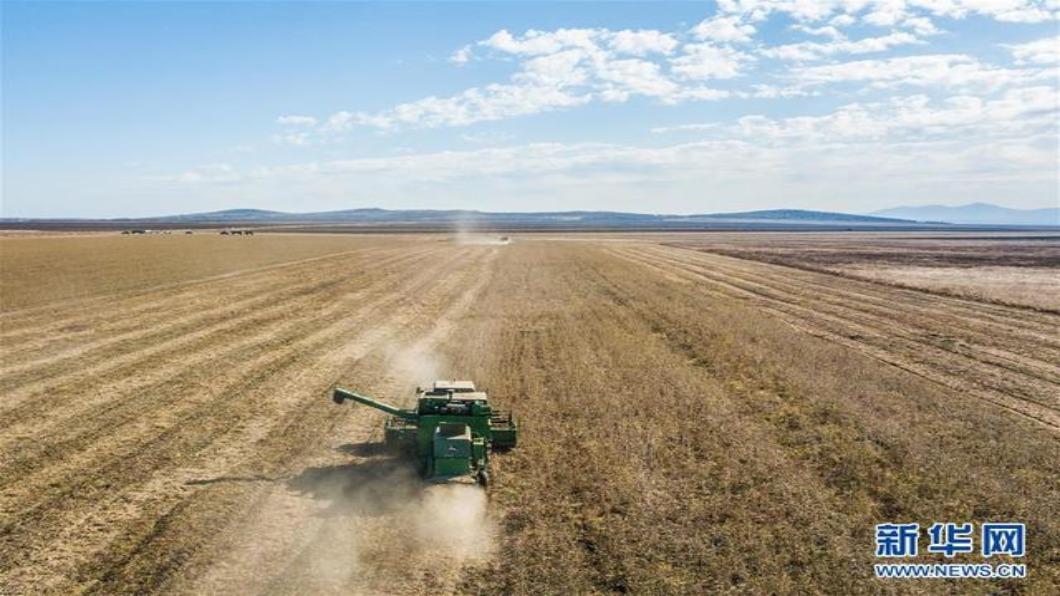圖/翻攝自 新華網 尋大豆!棄美轉靠俄 陸租20萬畝地自種再運回