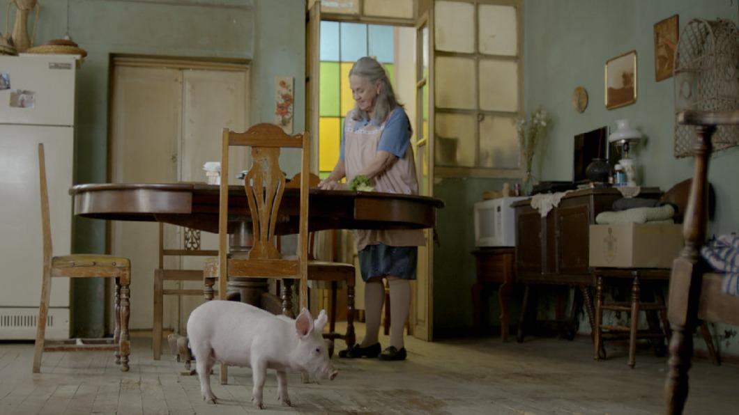 圖/聯影電影 提供 小豬成為新寄託 阿嬤獨居人生重點亮