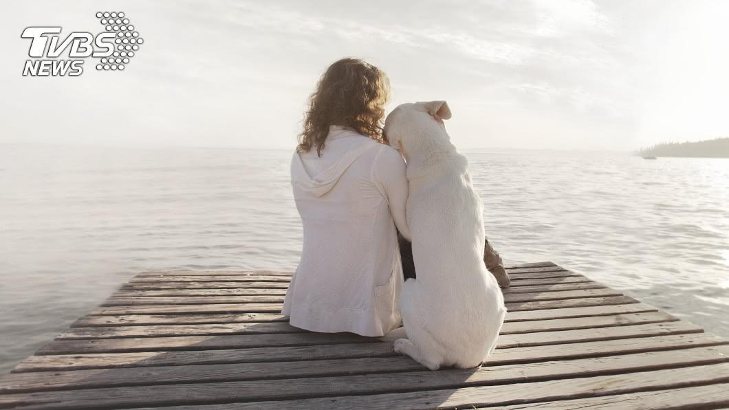 狗狗是人類的朋友。示意圖/TVBS 養7年愛犬遭婆婆丟掉!人妻氣炸離婚…狠墮3月兒