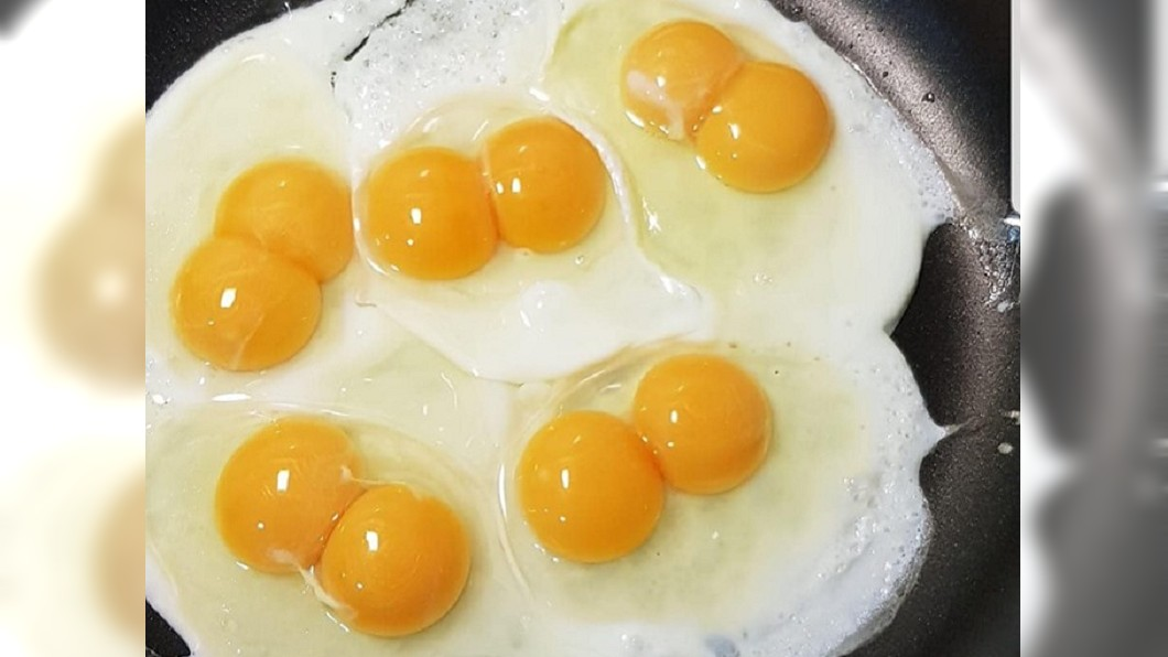 網友連下5顆蛋都是雙黃蛋。圖/翻攝自「爆廢公社」 超商雞蛋「連5拉5」 網見證神運跪求明牌