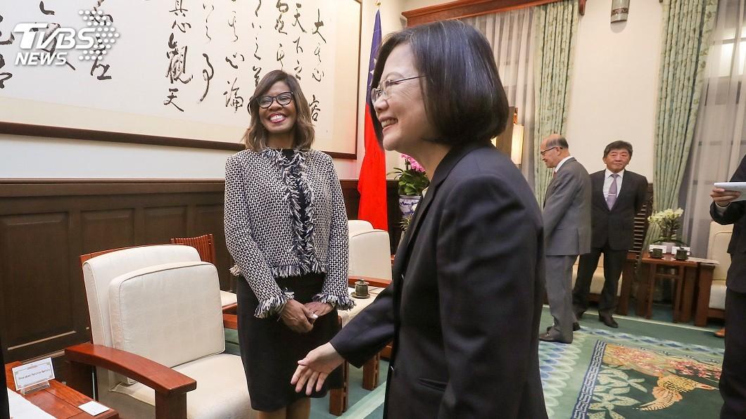 圖/中央社 蔡總統接見美國醫師會長 盼支持台灣國際參與