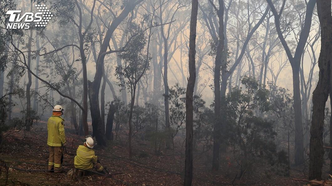 圖/達志影像美聯社 澳洲對抗叢林野火 高溫強風恐引發災難性大火