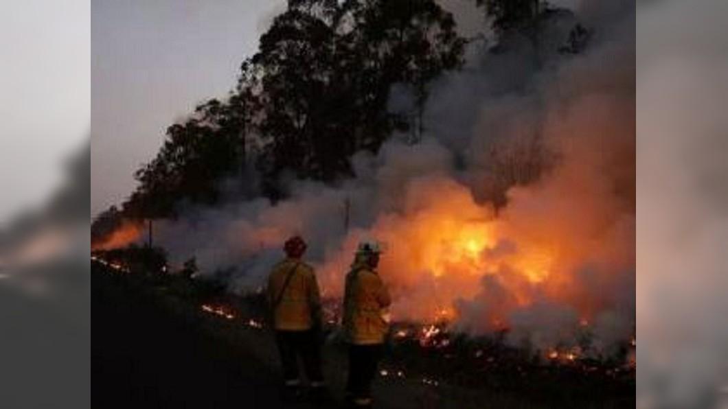 圖/翻攝自我有锅阿微博 野火肆虐澳洲新南威爾斯省 袋鼠、無尾熊也遭殃