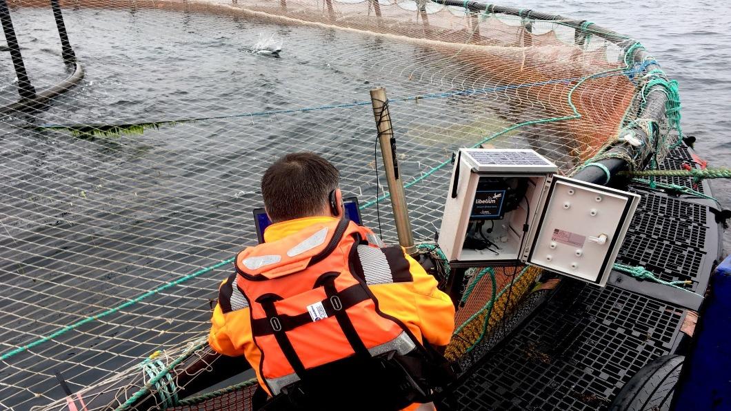 圖/翻攝自 5GRuralFirst twitter 英國5G下鄉 智慧通訊助鮭魚、威士忌產業