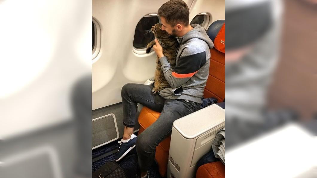 圖/翻攝自臉書 貓咪超重登機被拒 他竟找「縮小版」掉包惹議