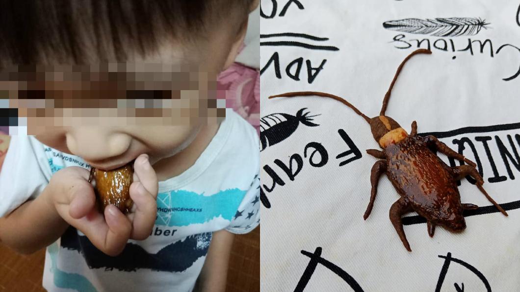 圖/廚藝公社 巧手媽完成男童「吃蟑螂」心願 網嚇瘋:母湯啦!