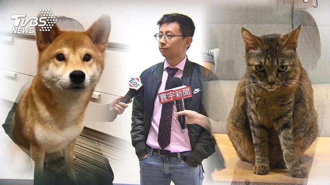 圖/TVBS 神犬領軍! 歡樂無法黨不分區推雞排妹、館長