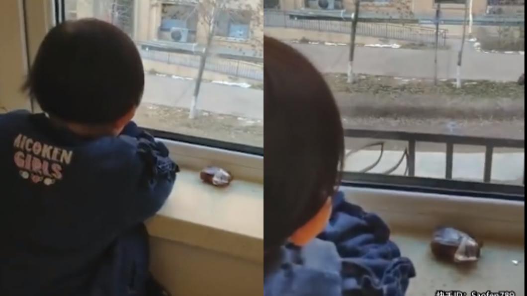 圖/翻攝自人民視頻微博 3歲女兒每天趴窗發呆 爸一看驚見「超萌真相」秒笑歪
