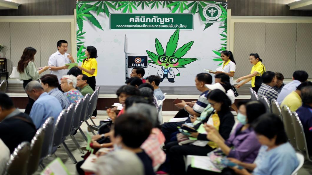 圖/達志影像路透 泰國藥用大麻合法化 首間「大麻診所」開張