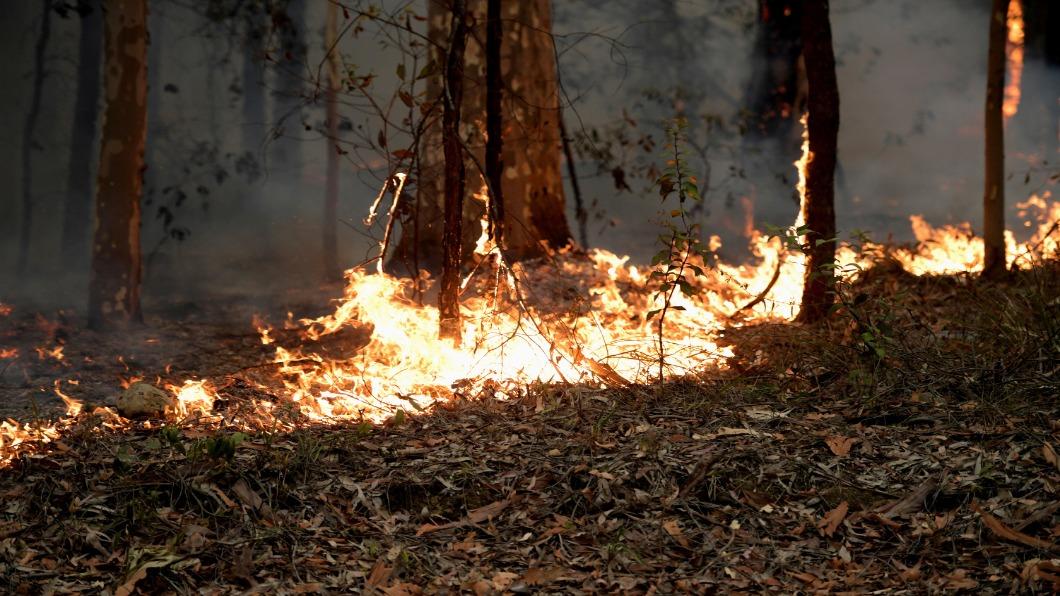 圖/達志影像路透 澳洲野火24人遭起訴 農牧村鎮陷絕境