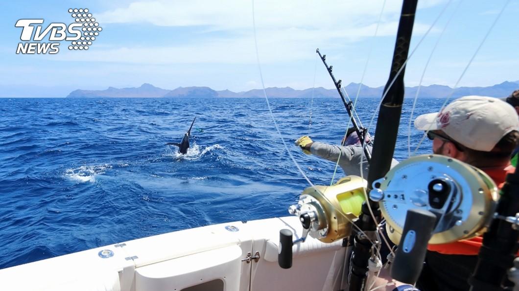 釣魚是很多民眾的休閒娛樂。(示意圖/TVBS) 狂男釣到158公斤巨型石斑 專家:牠至少50歲