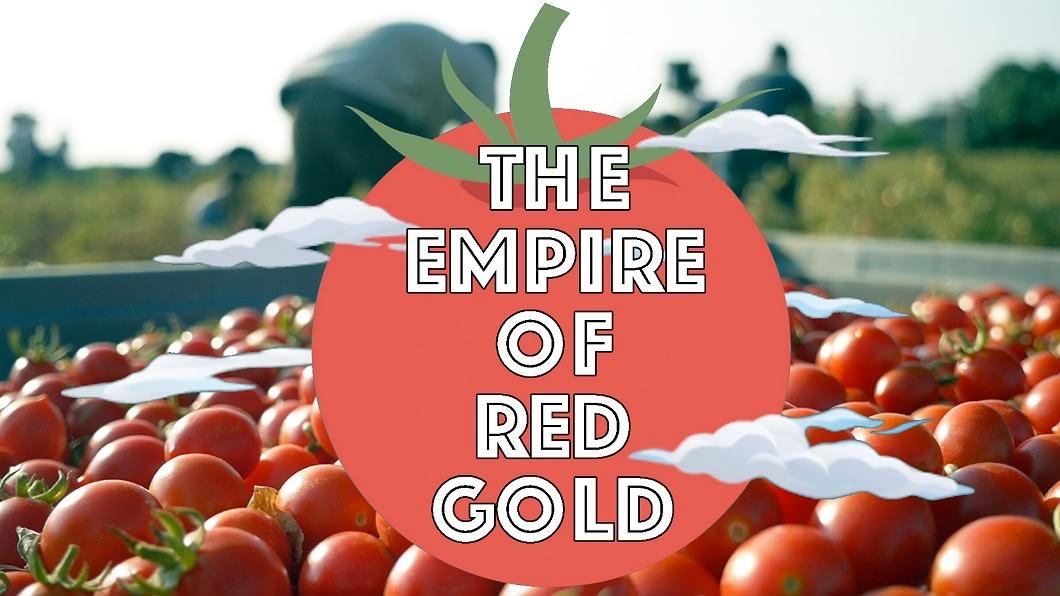 圖/畫面提供 公視主題之夜 義大利番茄醬 第二大生產國:原來中國
