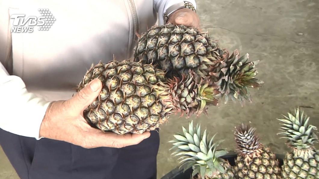 禁鳳梨重創台果農 陸官媒預告「還有下一波」