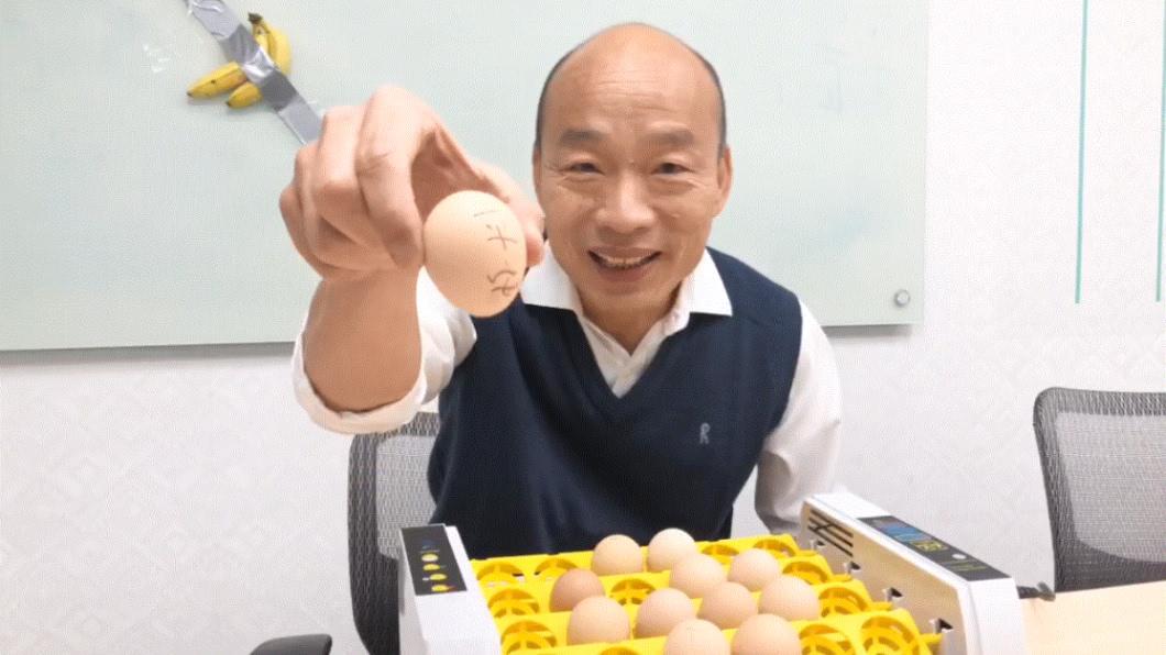 (圖/翻攝自韓國瑜臉書) 韓國瑜選前孵雞 「庶民、香蕉、寶貝」近況曝光