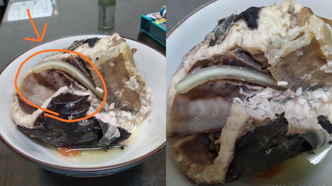 鱘龍魚骨裡拉出「不明條狀物」。(圖/翻攝自廚藝公社) 吃魚驚見「銀黃條狀物」是蟲? 老饕暴動:這超珍貴
