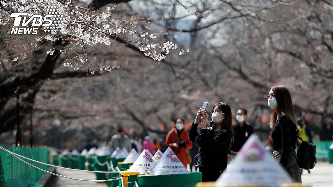 日本三連休!公園賞櫻野餐 民眾區隔距離