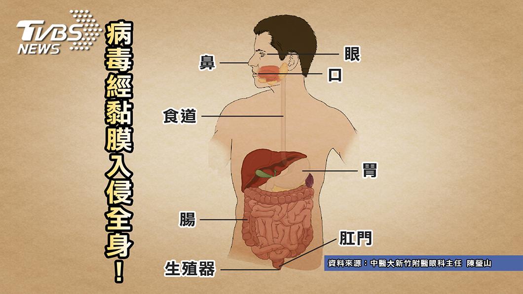 圖/TVBS提供  新冠肺炎大流行 「這習慣」惹禍 小心你每天都在犯!