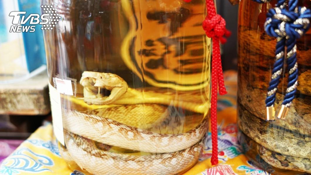 現在仍有不少人會遵循古法抓蛇入酒。(示意圖/TVBS) 娘家發現「陳年蛇酒」 網見內容物驚呆:小心