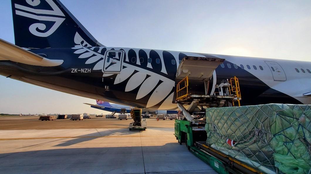 圖/紐西蘭航空提供 紐航客機轉貨機 帶奶油來台載醫療物資回紐西蘭