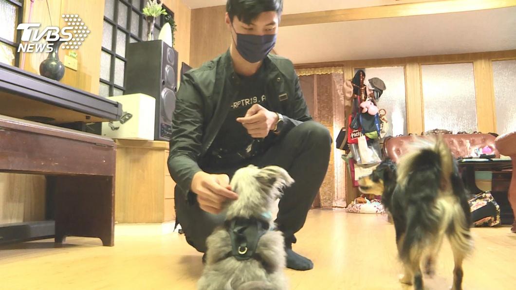 圖/TVBS 居家檢疫商機!代寵物美容 到府陪健身