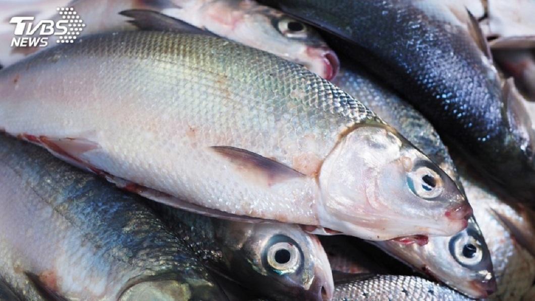 許多民眾平日喜歡吃魚。(TVBS資料示意圖) 喝魚湯「肛門痛3天」…女以為得痔瘡 2公分魚刺卡腸道