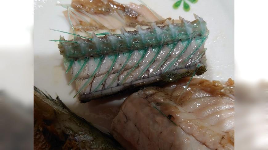 (圖/翻攝自新竹大小事) 被污染?吃魚驚見「鮮豔綠骨」嚇壞她 行家神揭密
