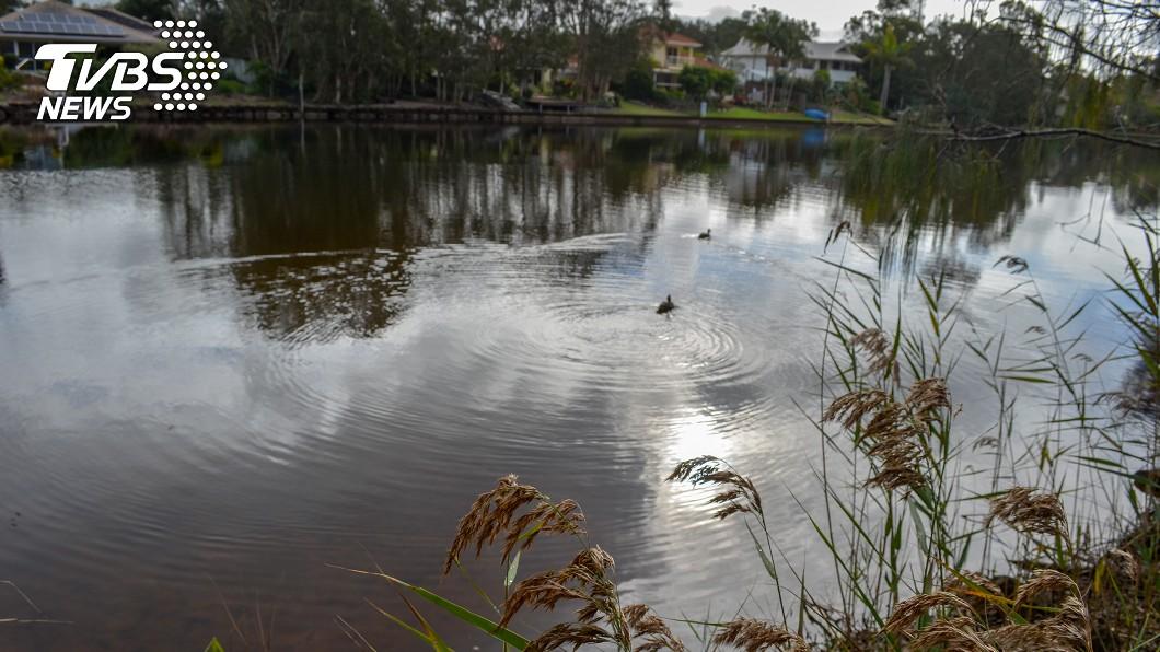 (示意圖,與本事件無關/TVBS) 一出生就被遺棄池塘邊…男嬰遭巨蜥啃食「臟器外露」