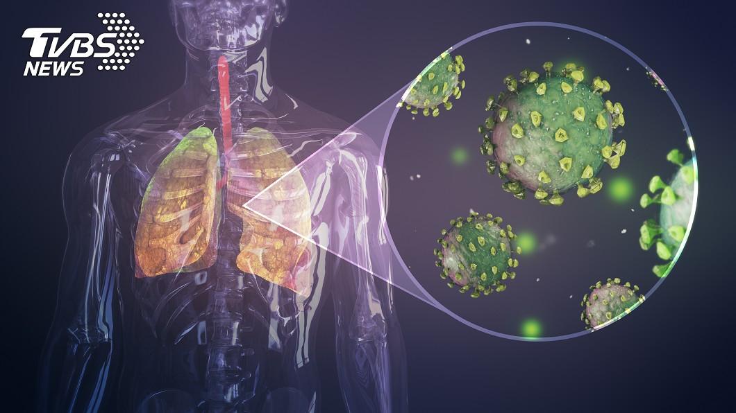 示意圖/TVBS 研究:肺部嚴重感染 恐致免疫系統暫時停擺