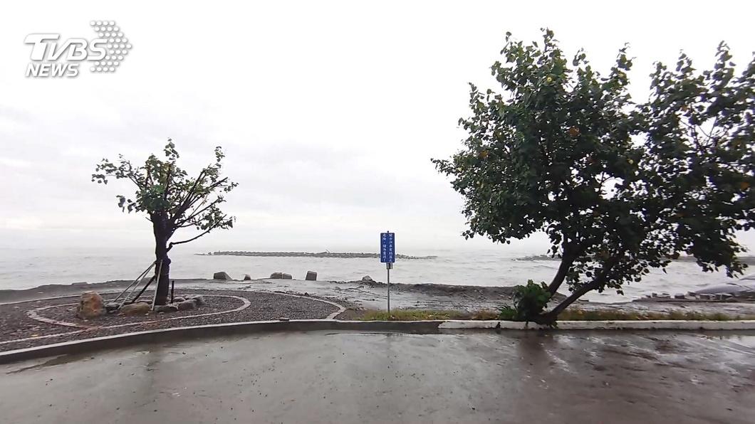 「國瑜樹」不敵風雨倒地 區公所1小時內扶正