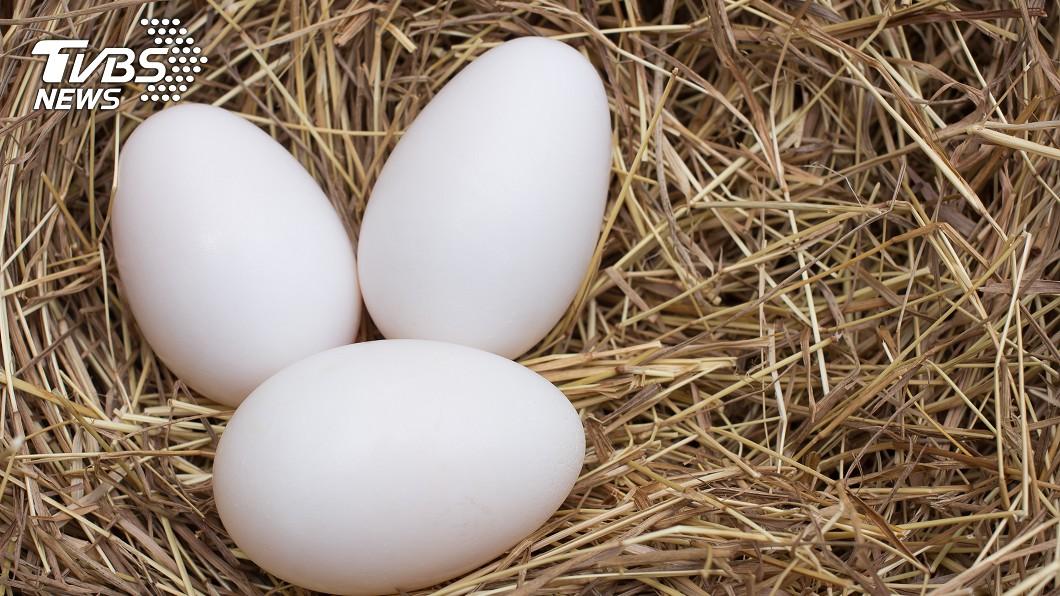葉姓女子今年3月間自國外夾帶90顆保育類的鸚鵡蛋欲闖關入境。(示意圖/TVBS) 女子返國夾帶90顆保育類鸚鵡蛋闖關 海巡查獲送辦