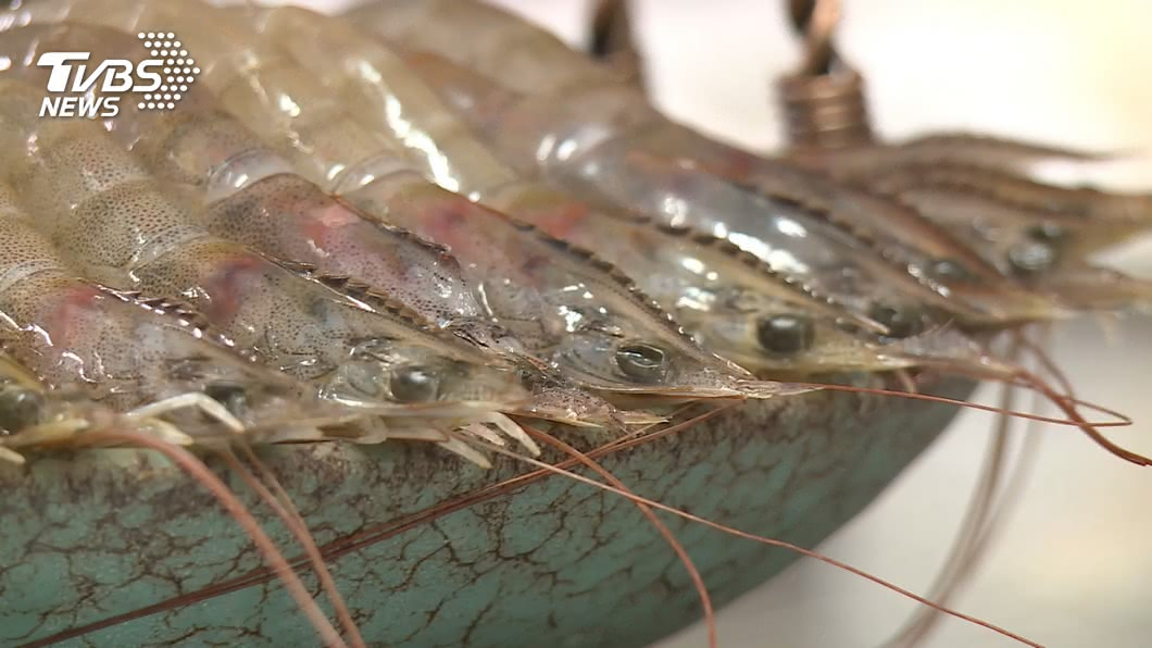 (示意圖/TVBS資料畫面) 中國從厄瓜多冷凍蝦包裝測得病毒 暫停進口