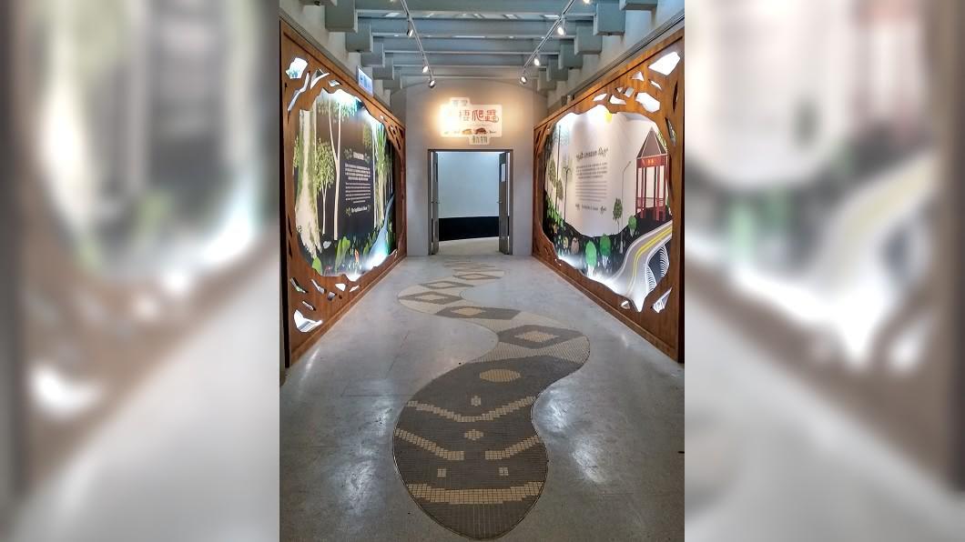(圖/台北市動物園提供) 北市動物園25日開放 推兩棲爬蟲動物特展
