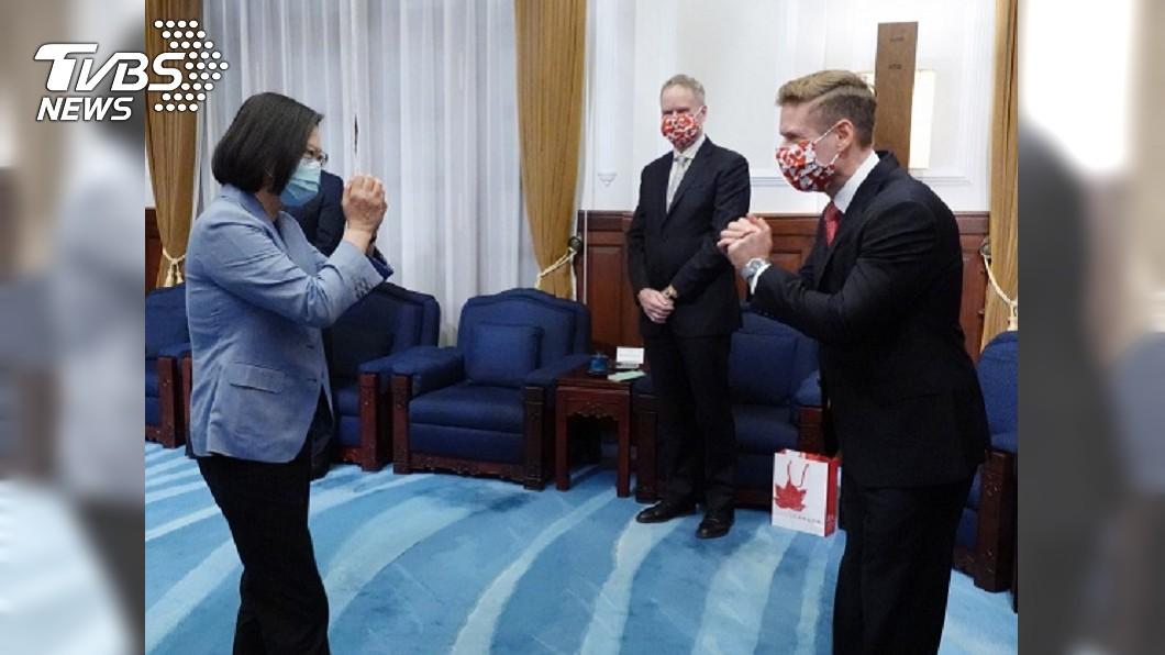 蔡總統於總統府接見加拿大駐台北貿易辦事處代表。(圖/中央社) 為經濟振興作準備 蔡總統盼與加拿大簽投資協定