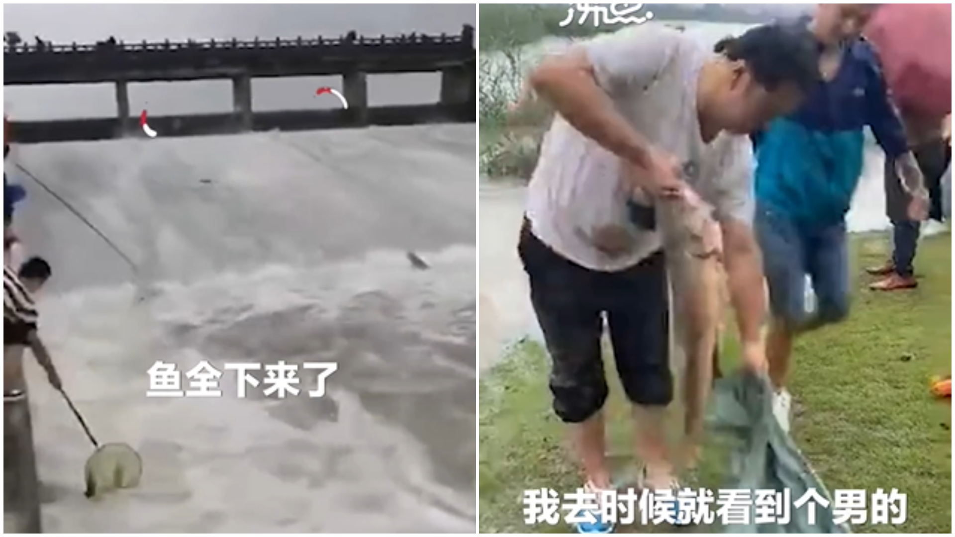 上百居民衝湖裡撈魚。(圖/翻攝自微博) 暴雨毀家!居民不要命「衝湖撈魚」 目擊者看傻:至少百人