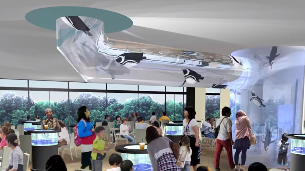 全台首創的「企鵝咖啡廳」將在北台灣最大的水族館「Xpark」登場。(圖/翻攝自Xpark官方網站) 邊喝咖啡邊看企鵝!桃園新水族館13必看亮點報你知