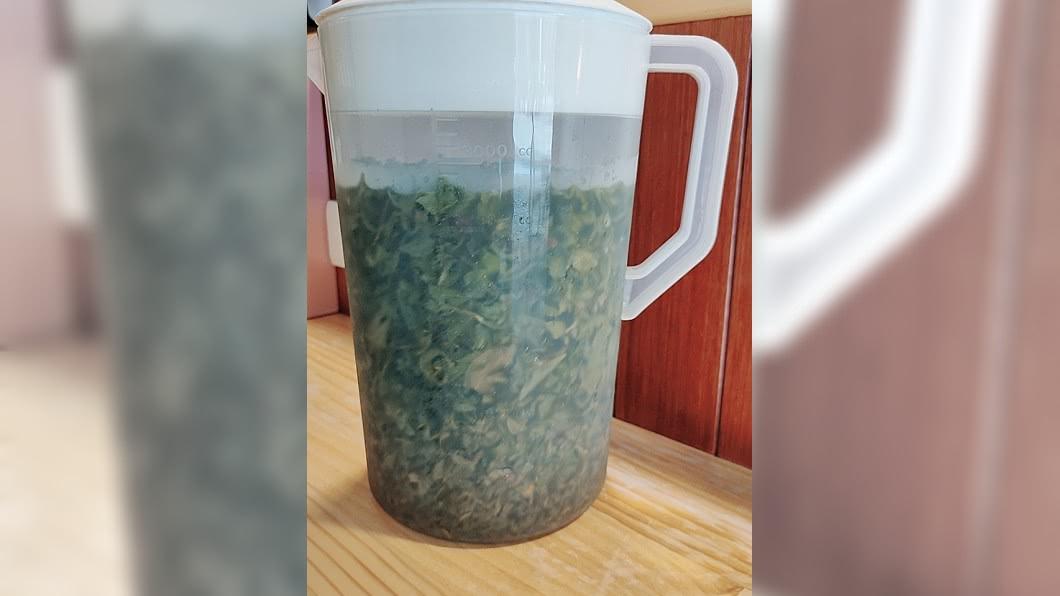 有網友分享自製冷泡茶卻搞錯比例,整壺變成像是海帶湯。(圖/網友授權提供) 網友自製冷泡茶變海帶湯 搞錯比例變「10倍特濃」