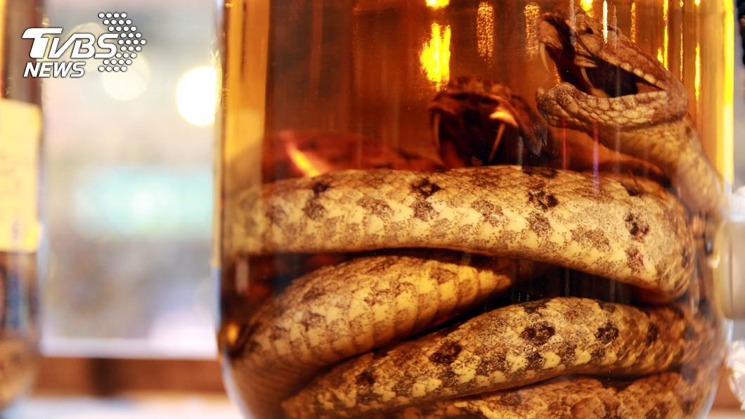 現在仍有不少人會遵循古法抓蛇入酒。(示意圖/shutterstock達志影像) 驚見老爸私藏「50年蛇酒」 網嚇壞:確定不是塑膠管?