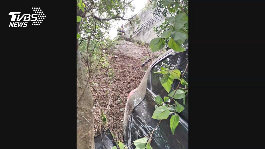 車禍大樹救命! 車墜邊坡「如立筊」2人輕傷