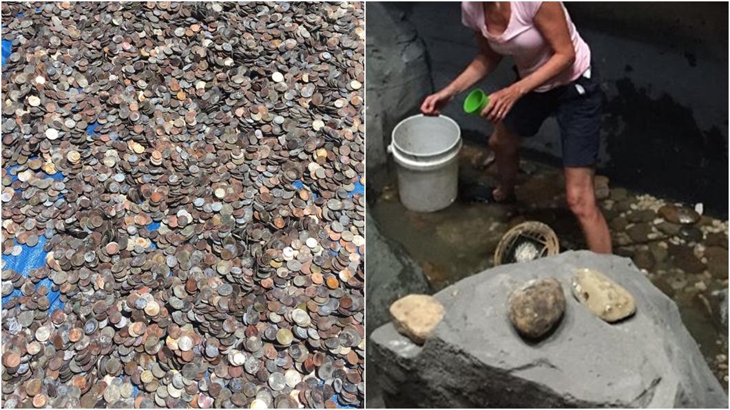 (圖/翻攝自NC Aquarium at Pine Knoll Shores臉書) 水族館窮到挖許願池應急 撈出4百公斤「錢海」網看傻