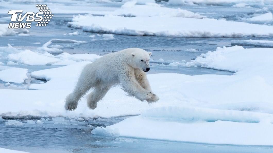 (示意圖/shutterstock 達志影像) 海平面上升危機 研究:格陵蘭冰層已融化到難以挽回