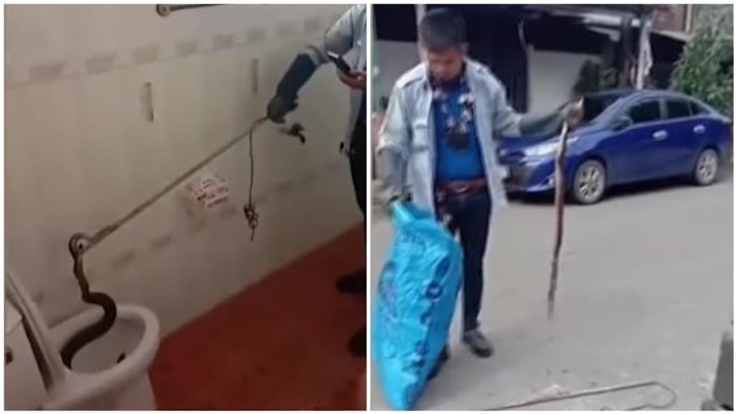 泰國1明男子日前在自家如廁時,突然感覺有東西頂他的屁股,沒想到竟是條眼鏡蛇。(圖/翻攝自YouTube合成) 男上廁所「感覺有東西頂我」 馬桶鑽出1.5公尺眼鏡蛇