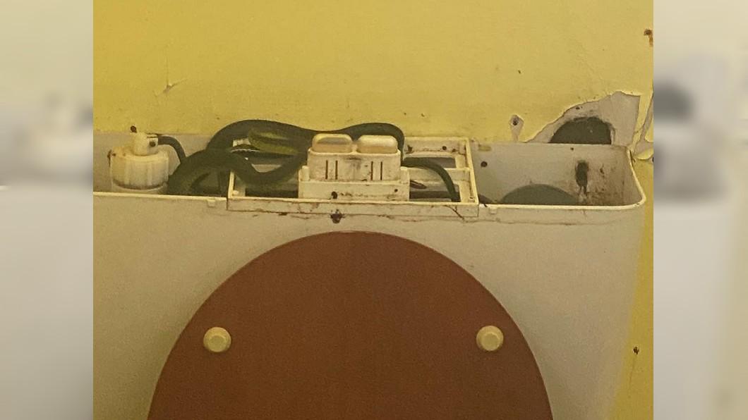 馬桶水箱內驚見4蛇盤據。(圖/翻攝自臉書社團「Townsville Snake Catchers」) 馬桶沖不了 水箱成蛇窟「4條交纏狂扭」最長1公尺