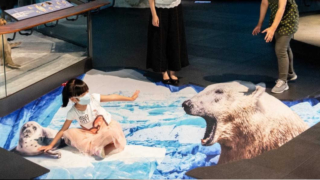 北極熊和海豹同樣都面臨到生存危機,你要救哪個動物朋友呢?(圖/奇美博物館提供) 逼真程度破表! 奇美博物館最新「3D立體地景」